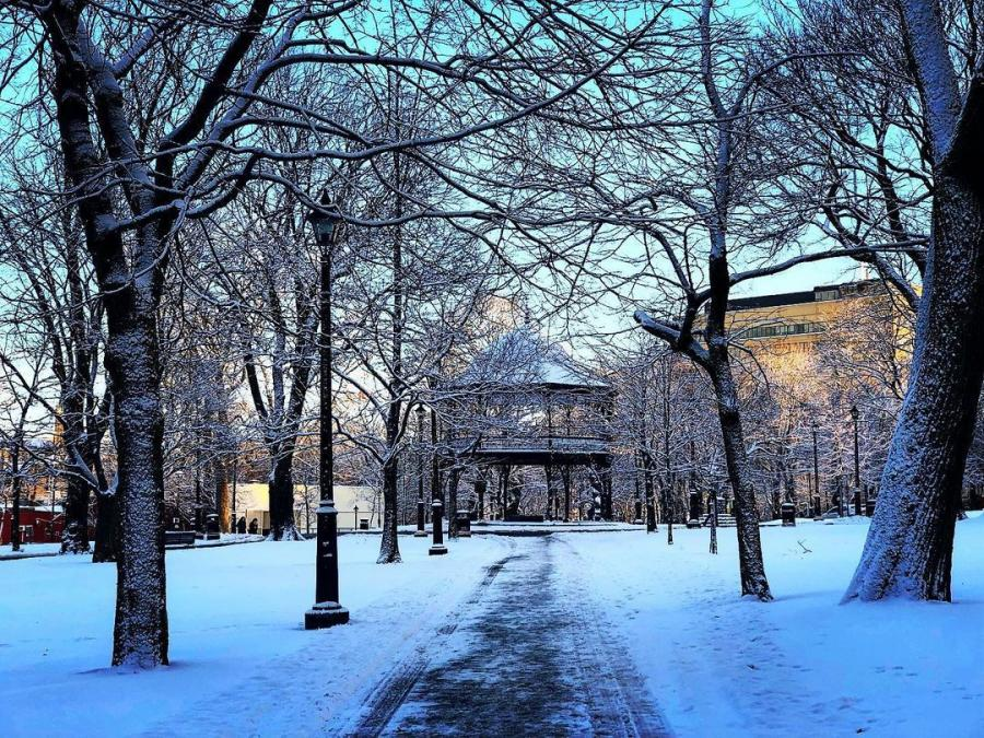 King's square in all its winter glory. Credit @ruthellensmith