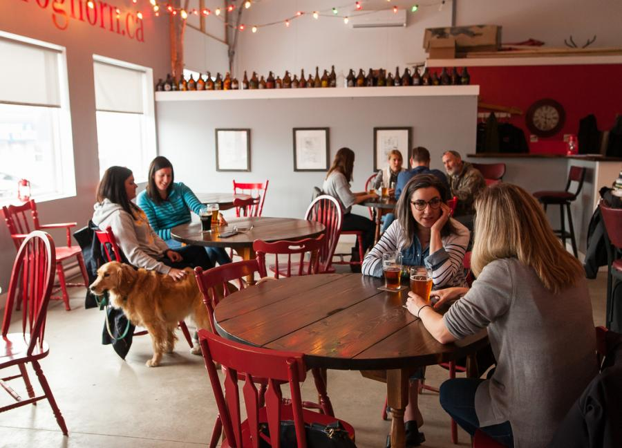 The friendly ambiance at Foghorn Brewing