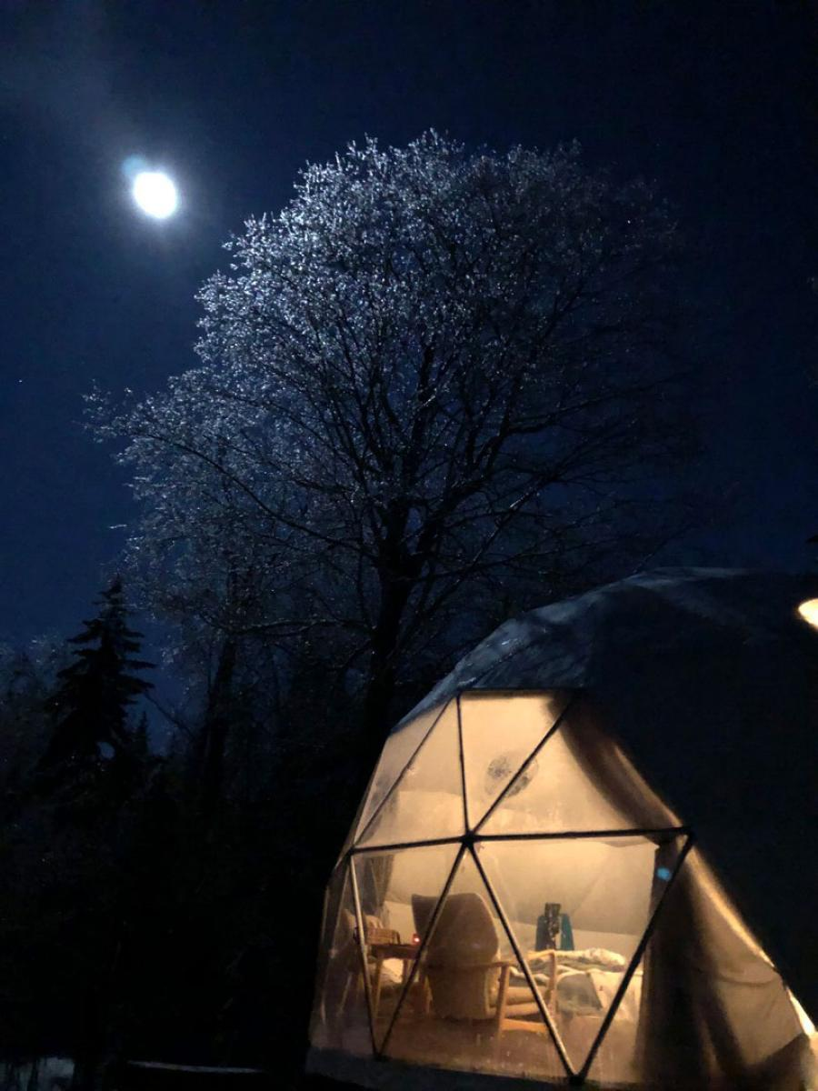 Stargazing in a dream dome at Ridgeback Lodge